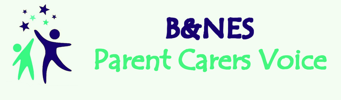 Parent Carers Voice